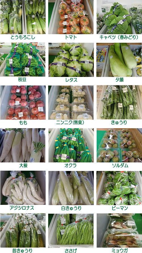 石神の丘産直旬野菜情報8月