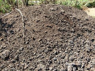 堆肥(三年経過)