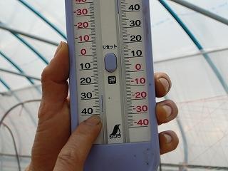 キュウリハウスの温度計