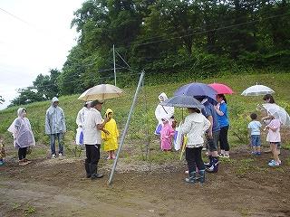 ブルーベリー摘み取り・野菜収穫体験