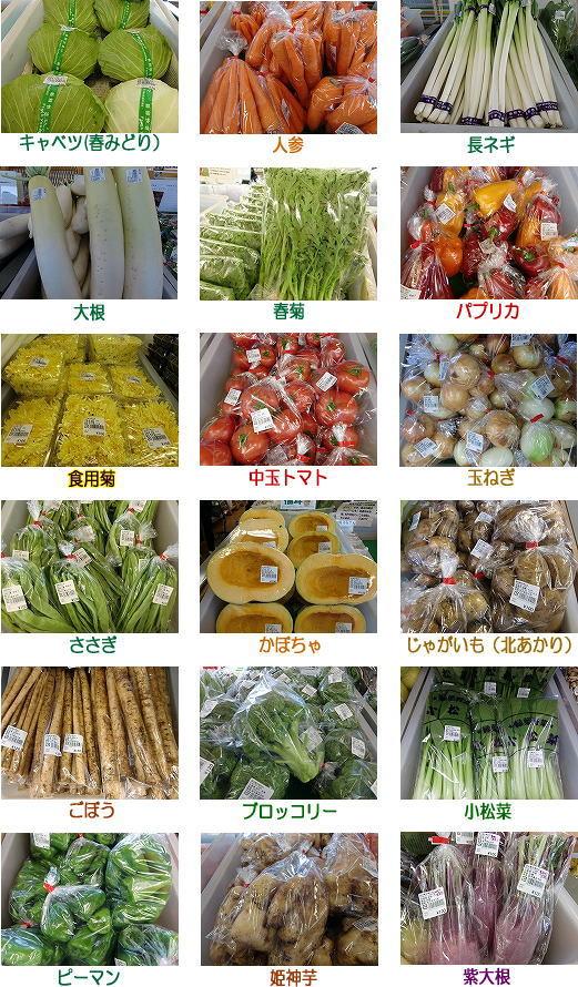 9月 産直野菜
