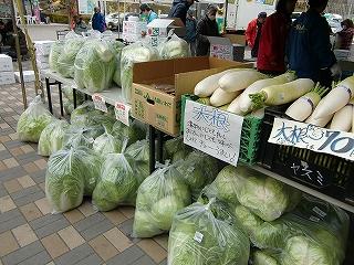 たくさん並んだ野菜
